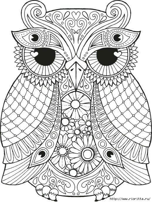 Owl Coloring Pages Pdf : Pin by zamzamia on pinterest adult coloring
