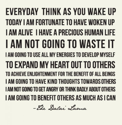 Everyday think as you wake up, today I am fortunate to have woken up. I have a precious human life and I am not going to waste it. -The DalaiLama