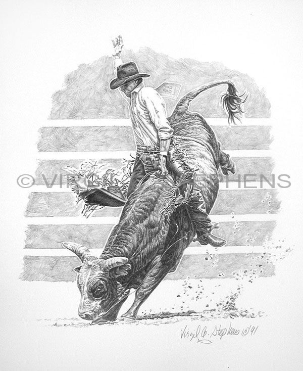 Bull riding drawings bull riding pencil drawing by western artist virgil c stephens