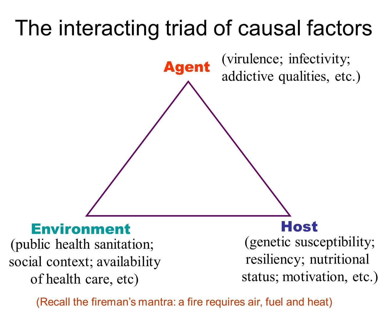 What is triangle of epidemiology in relation to obesity