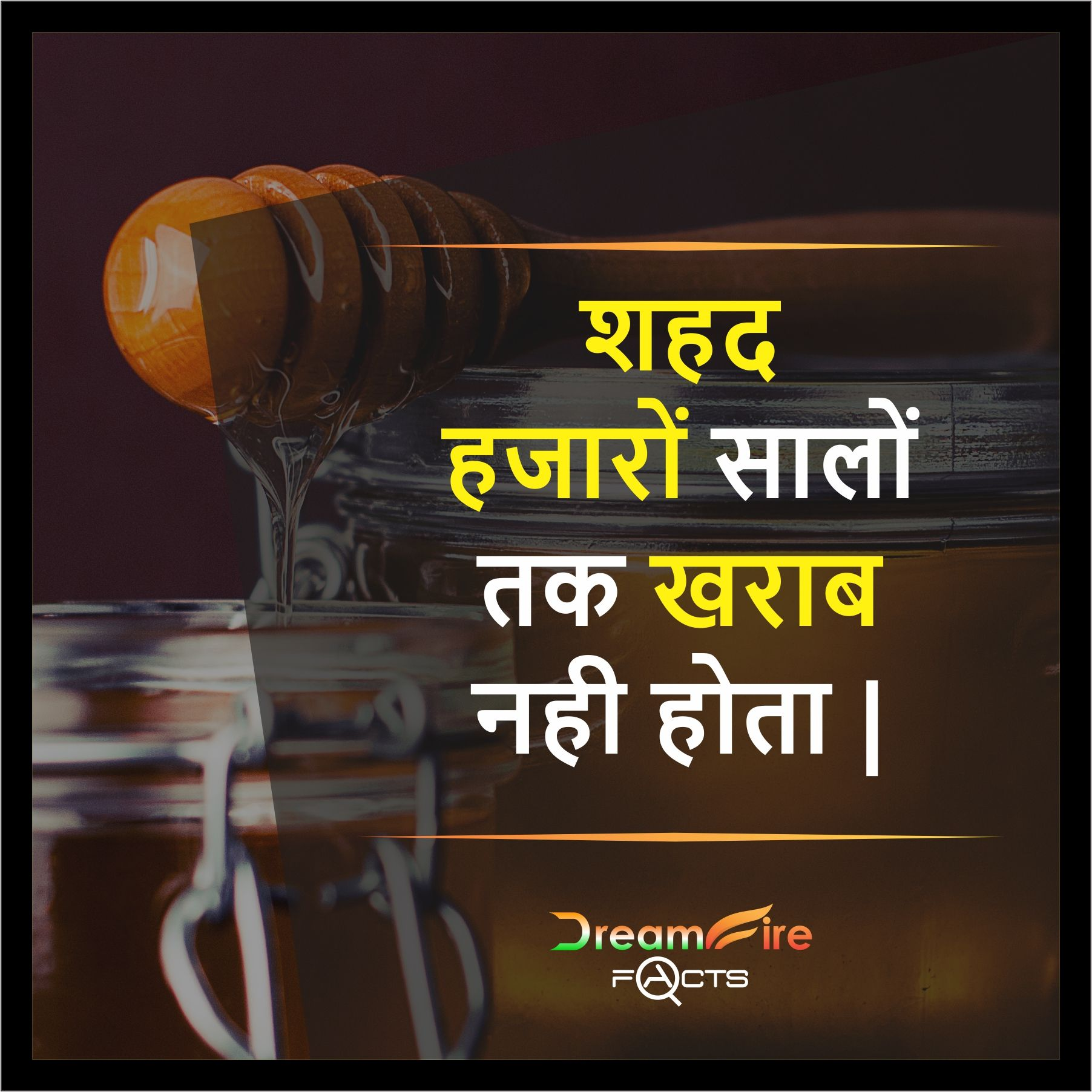 148 Best true facts images | Hindi quotes, Life quotes, True facts