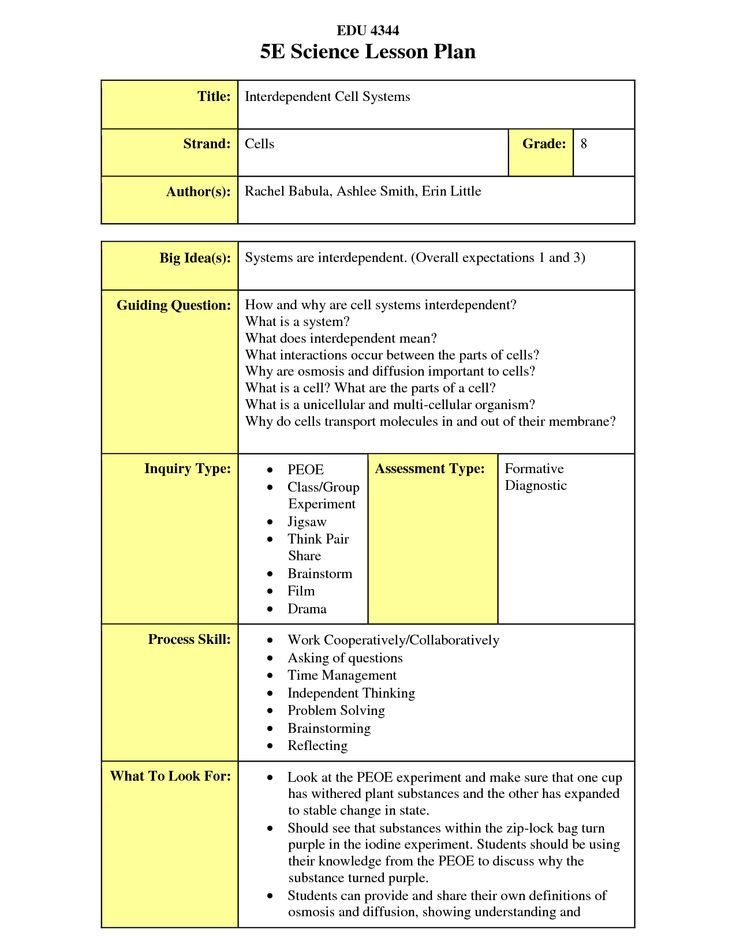 Image Result For Examples Of Flex Model Lesson Plan Home Schooling