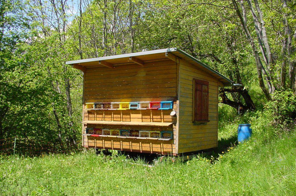 pin von auf horned beehive pinterest. Black Bedroom Furniture Sets. Home Design Ideas