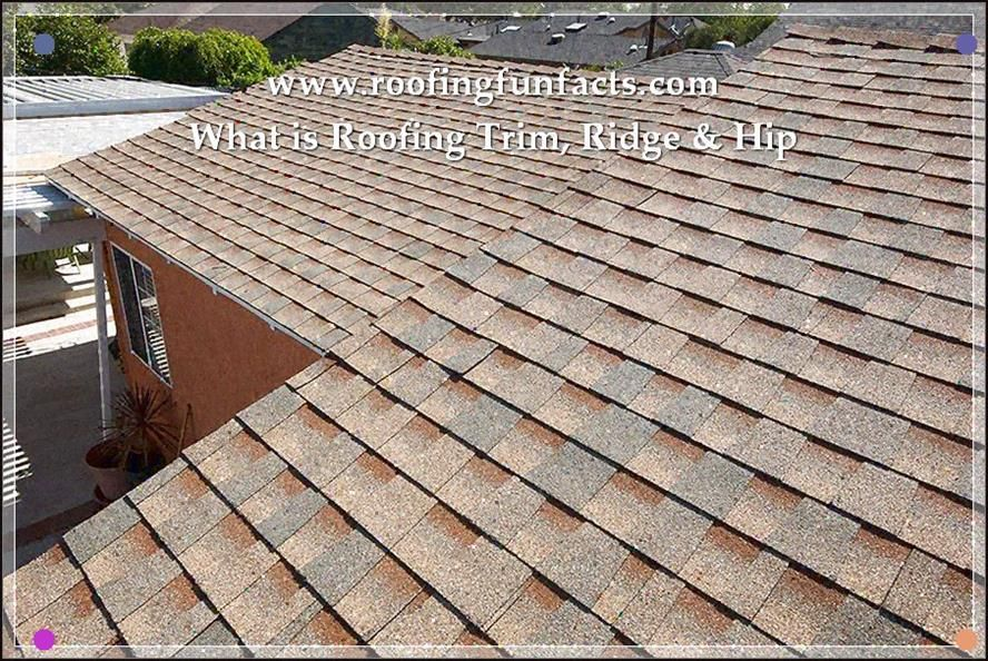 Discovery Of Roofing History To Learn More Read More Info By Clicking The Link On The Image Lowmaintenanceroof Roofing Roof Cost Leaking Roof