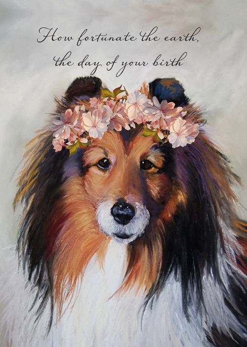 This Sweet Sheltie Makes A Wonderful Birthday Card Which Reads How Fortunate The Earth The Day