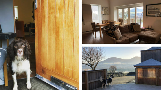 Dog Friendly Holiday in the Scottish Borders Holiday