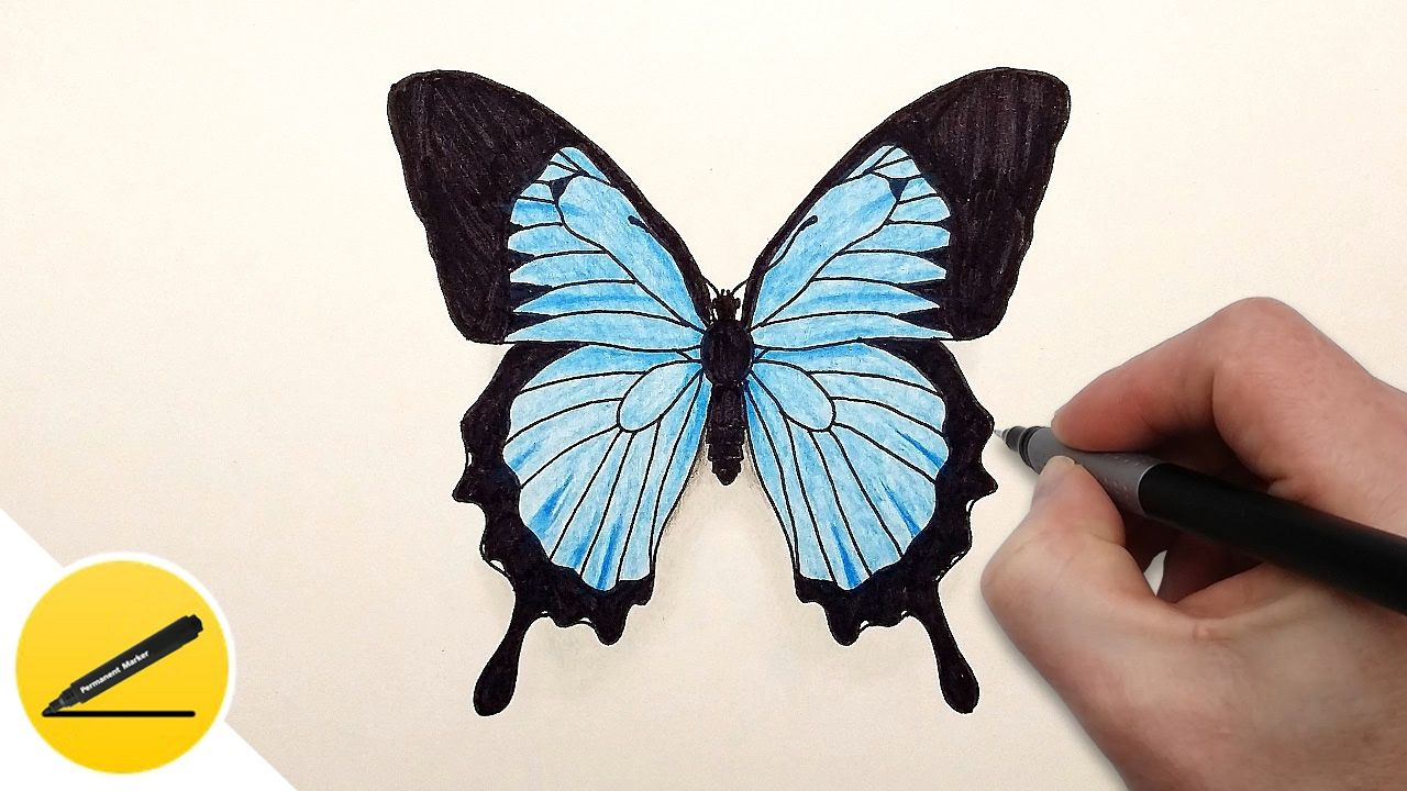How To Draw A Butterfly Step By Step Easy Drawing Tutorial Step By Step Drawing Tutorial In This Video You Will Legkie Risunki Risovat Nastennaya Rospis