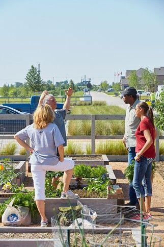 Living Farm To Table DallasFort Worth Pinterest Farming Fort - Farm to table dallas
