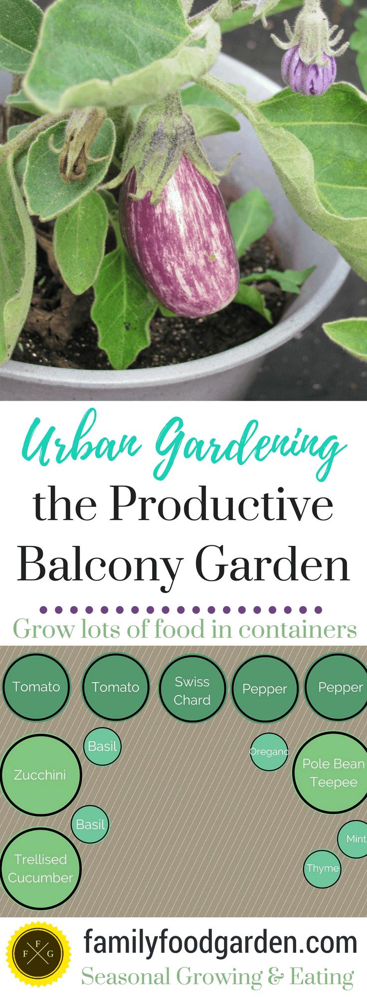 Productive Balcony Garden for Urban Gardening