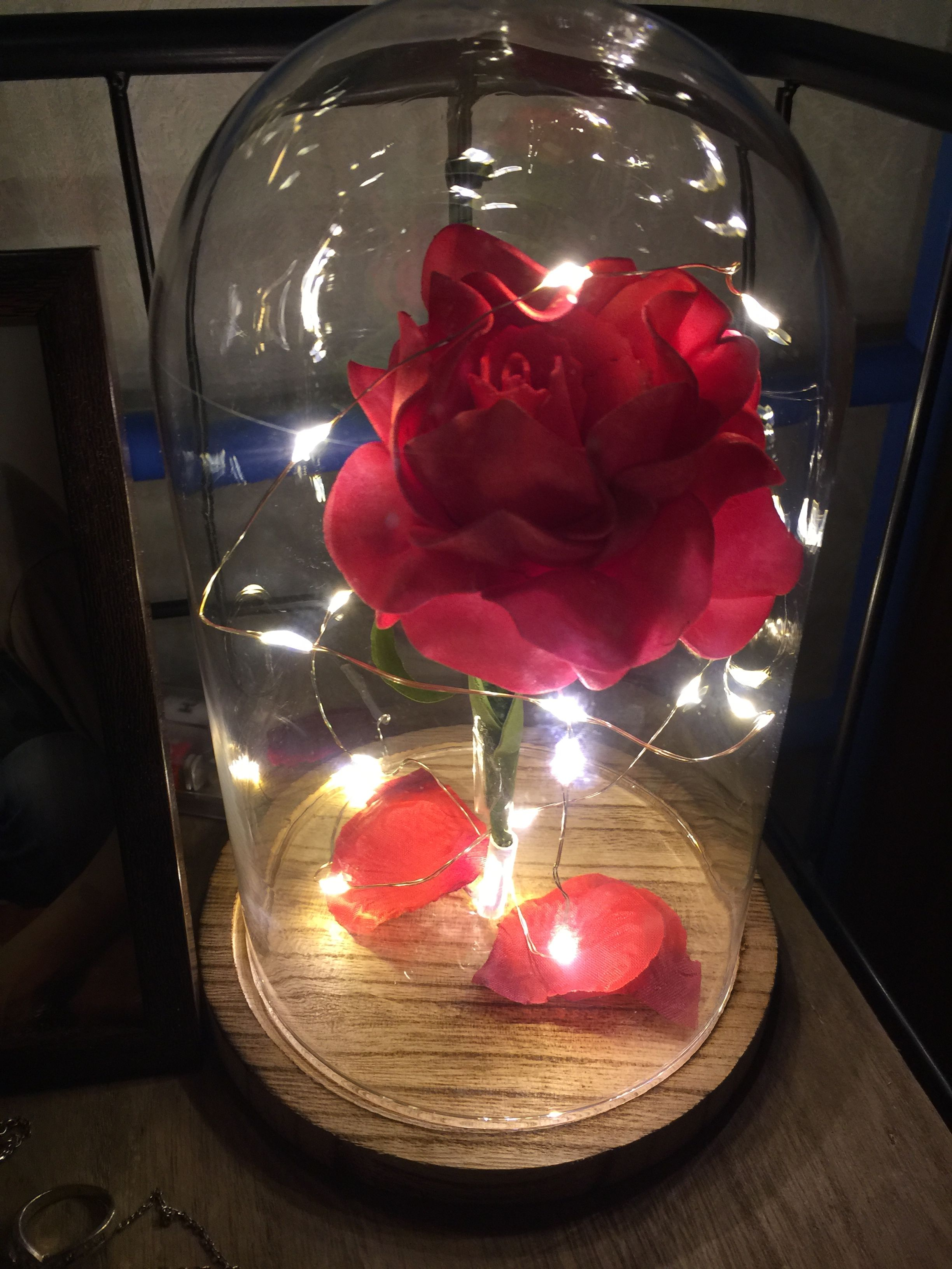 Diy chanted rose from beauty and the beast de roos rozenblaadjes diy chanted rose from beauty and the beast de roos rozenblaadjes de leds izmirmasajfo