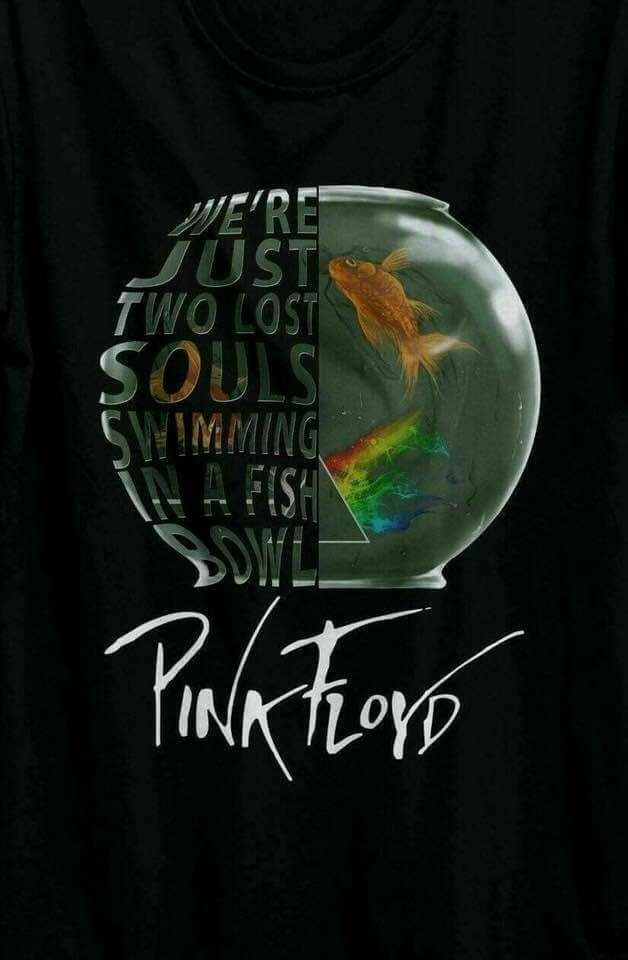 Year after year. I wish you were here. If you are hearing the opening play in your head like I am, you are a true Pink Floyd fan. This is my fave Floyd song.