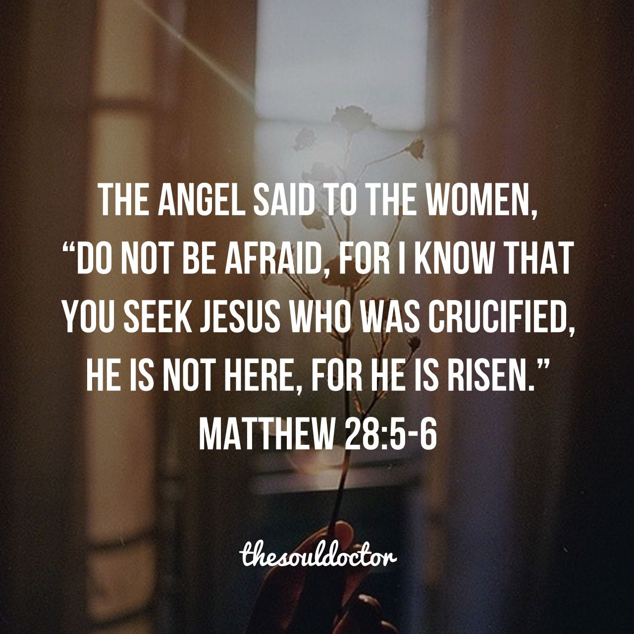Christian Easter Quotes The Soul Doctor  Resurrection  Pinterest