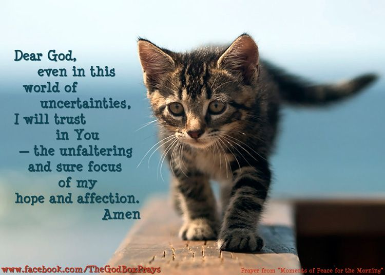 Dear God, even in this world of uncertainties, I will ...
