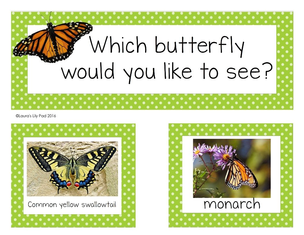 Spring Theme Question of the Day Spring theme, This or