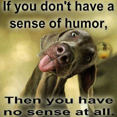 A sense of humor will get you through the hardest times.