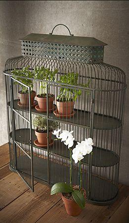 Bird Cage Display Wall Shelf Bird Cage Decor Vintage Bird Cage