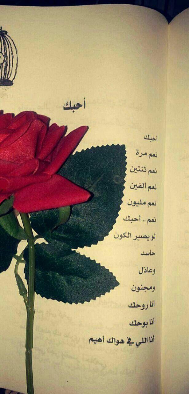 انا اللي في هواك أهيم Love Words Love Text Roman Love