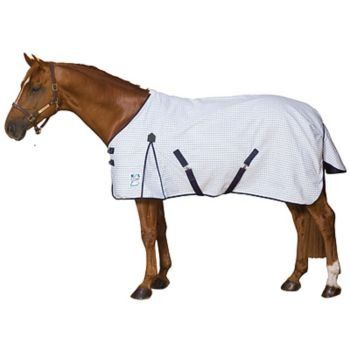 Pin By Maki 4im On Pet Supplies Horse