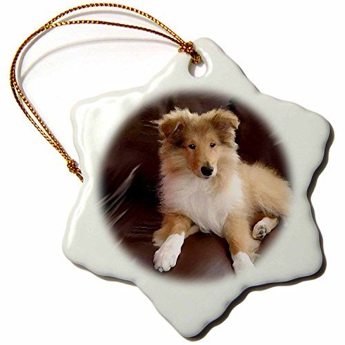 3drose Rough Collie Puppy Snowflake Porcelain Ornament 3inch