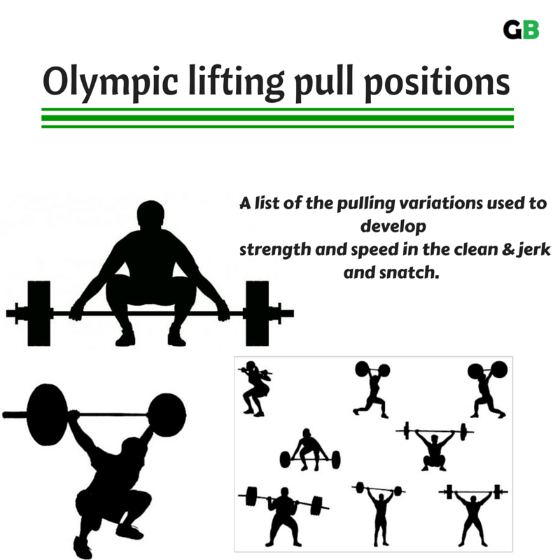 expert fitness | Gymbulk