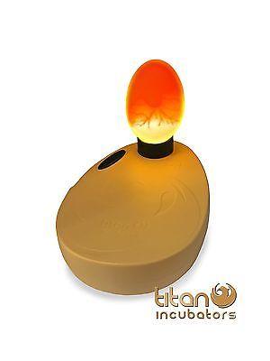 Egg Incubator Types
