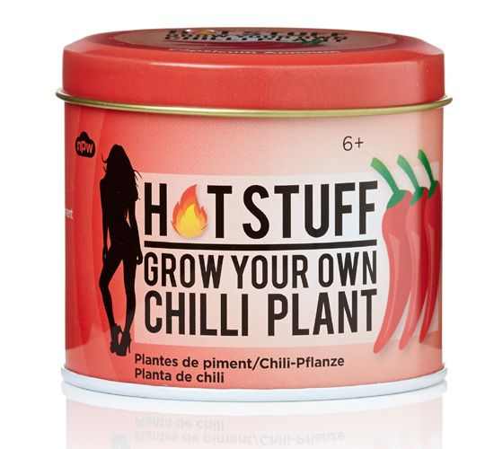 HOT STUFF CHILLI PLANT - GROW YOUR OWN