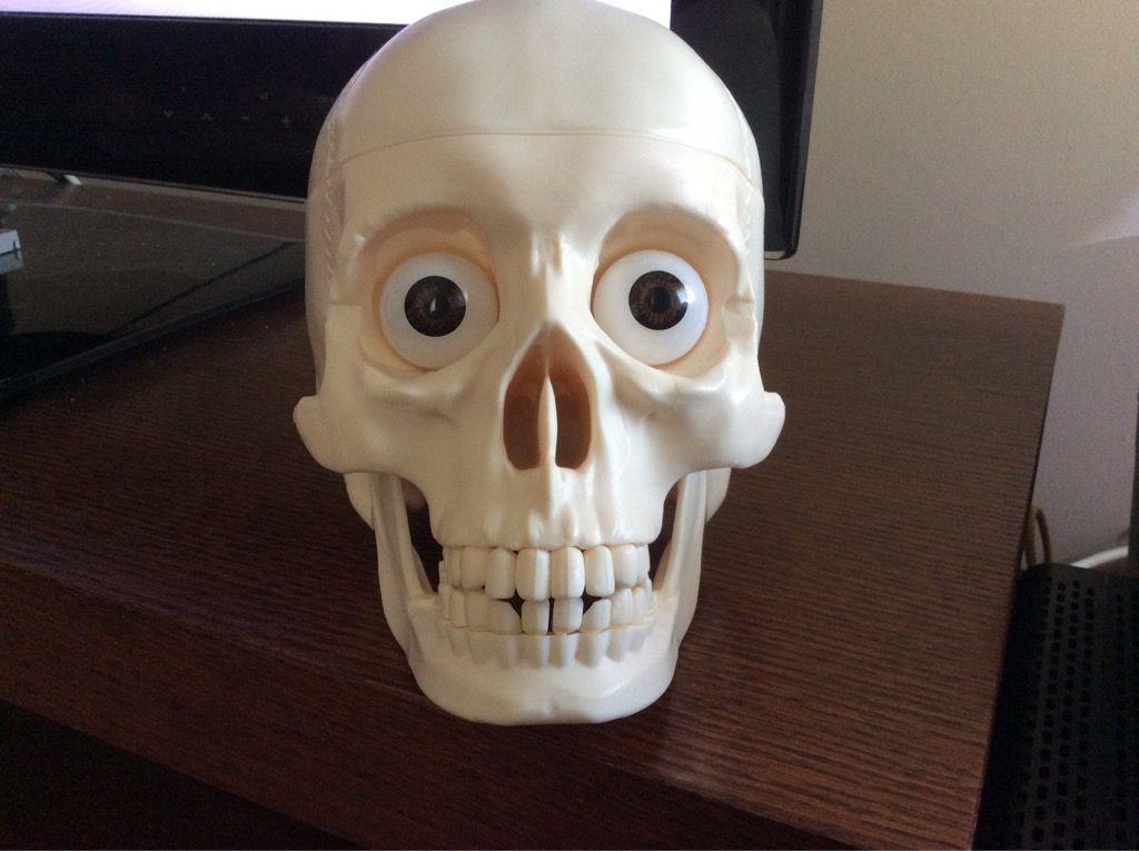 Tiene todos los dientes ls dos ojos se le abre la cabeza y tiene el cerebro 5 euros