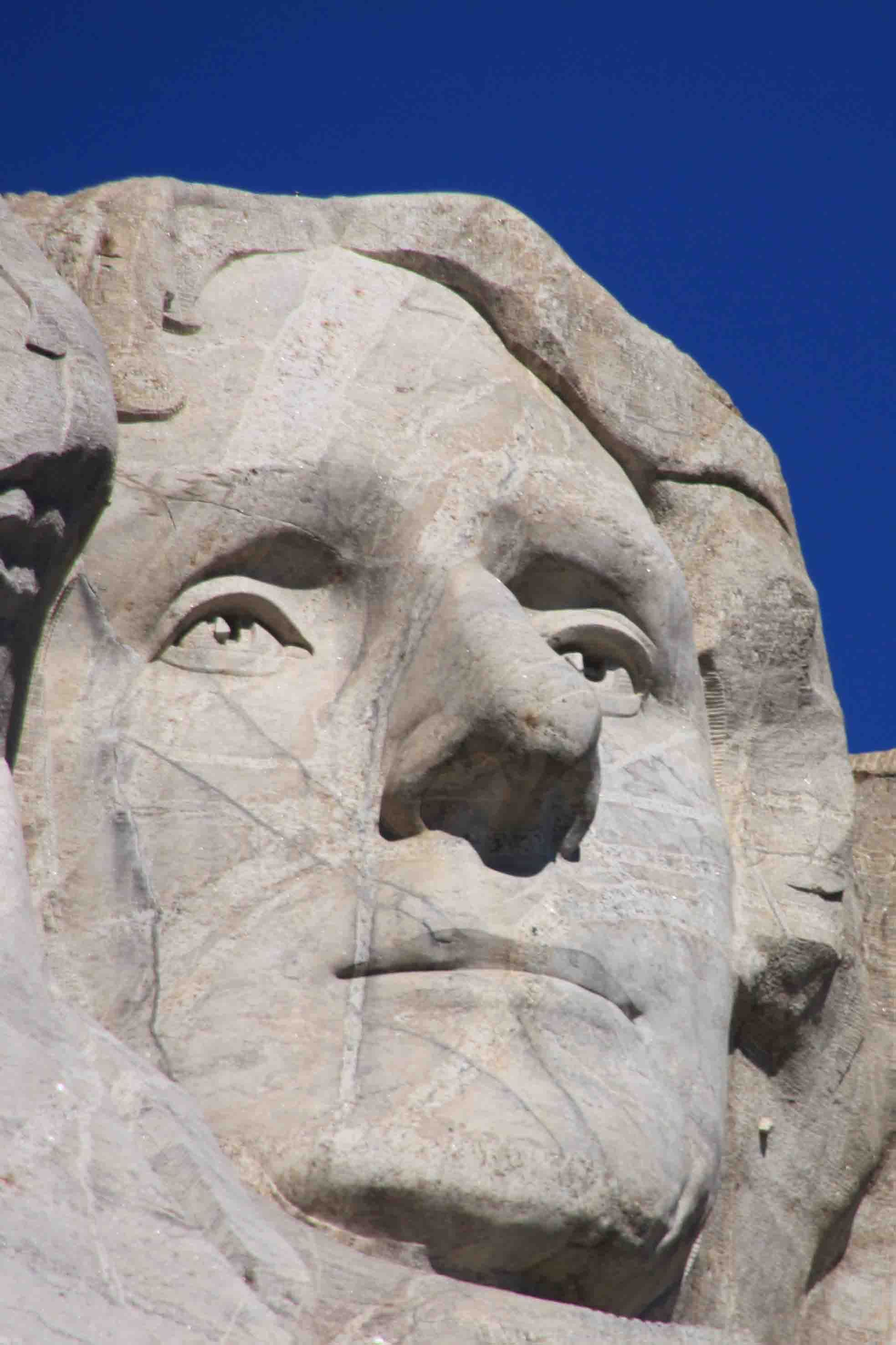 Mt Rushmore Eyes