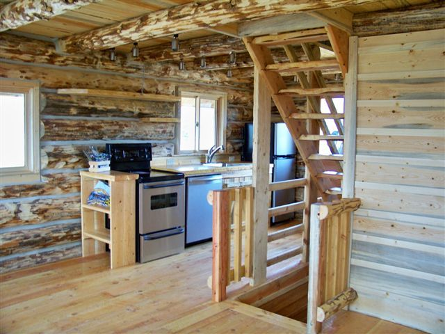 Tiny House With Basement Cabin Kitchen With Stairways To