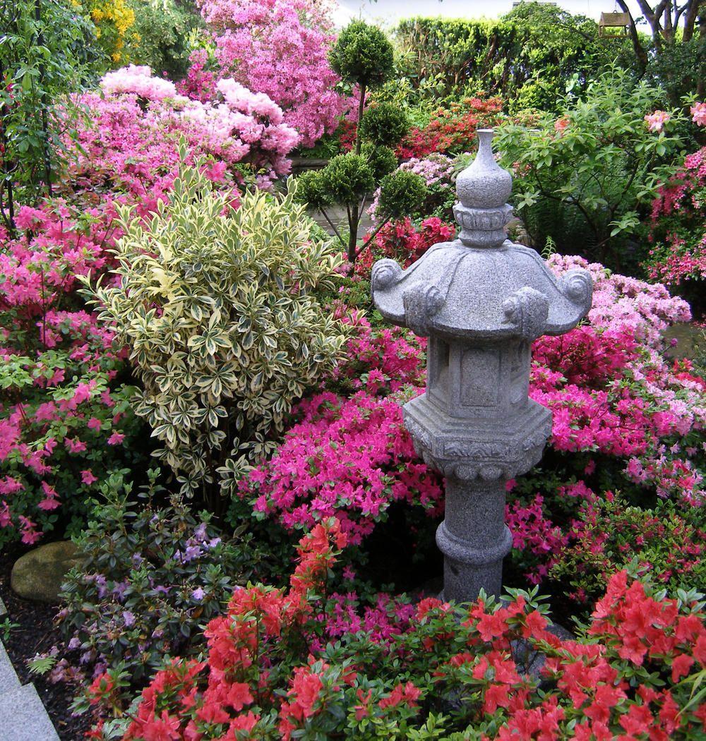 Japanischer Garten - planen, anlegen und Tipps   Frostschutz, Kübel ...