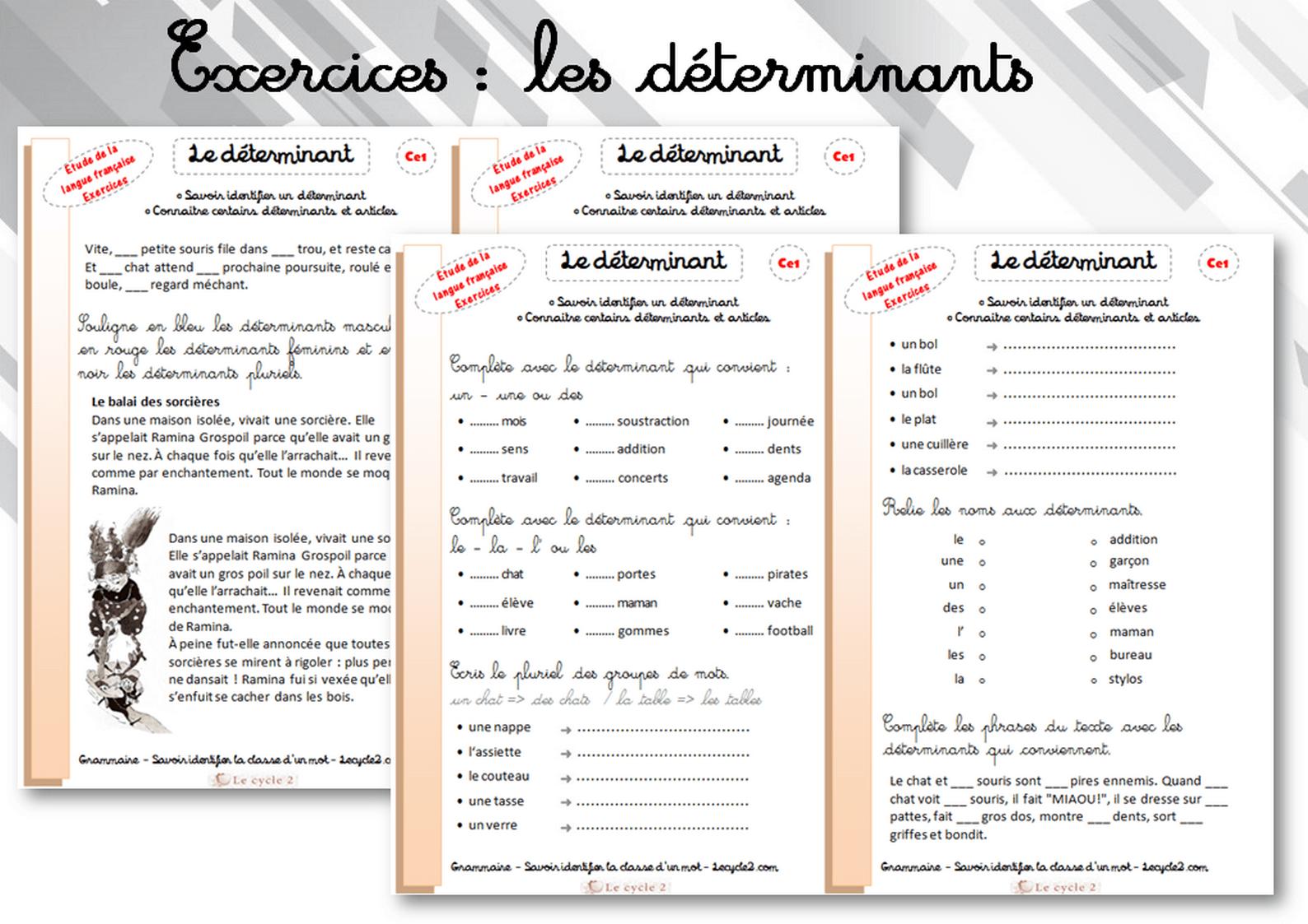 Fiches d'écercices sur les déterminants - grammaire ce1 | Grammaire ce1, Les déterminants et ...