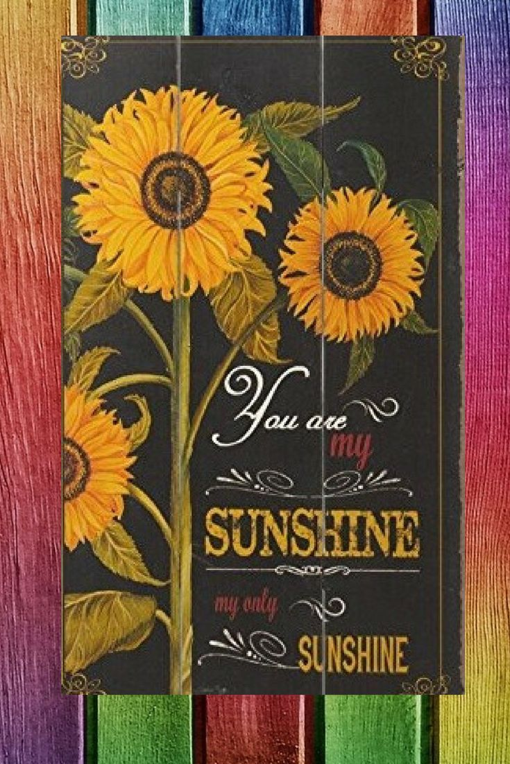 Bright bold and charming sunflower wall decorations sunflowers