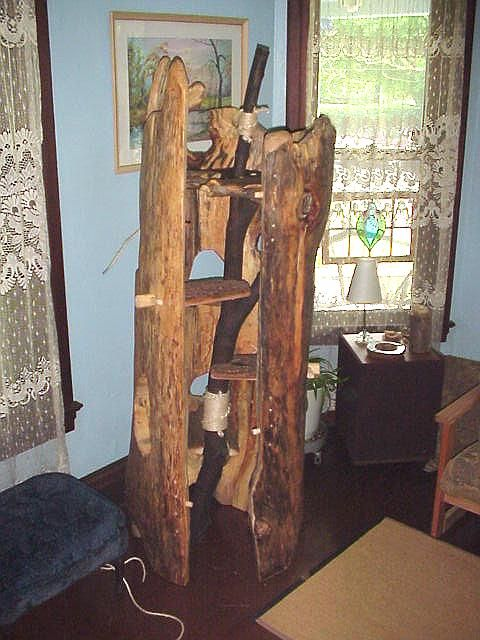 Natural Tree Furniture Hollow Log Cat Trees 1 Panel