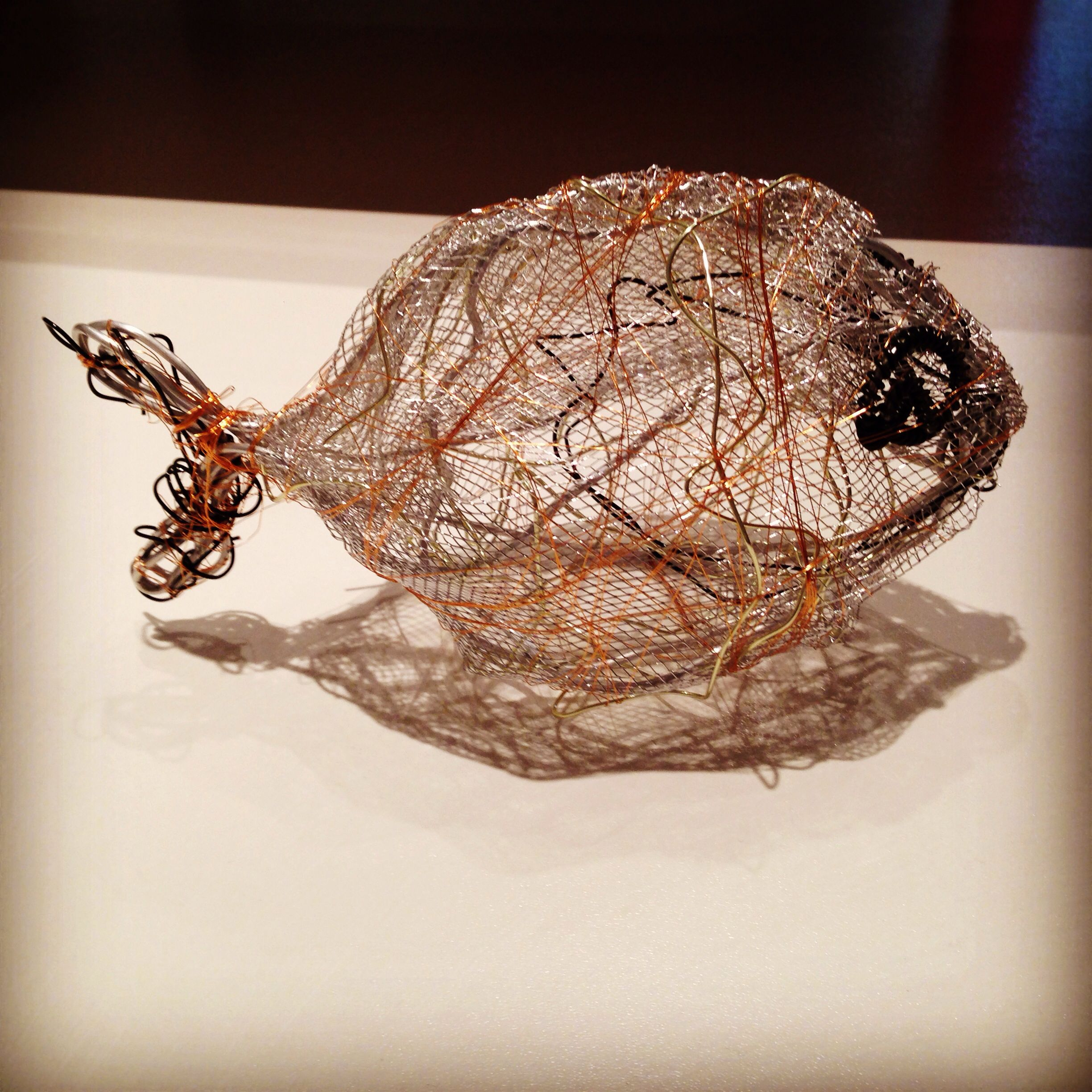Wire Fish 3D