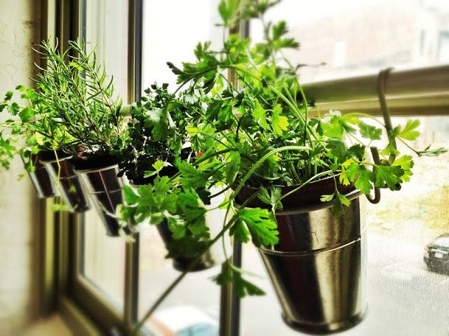 Window Herb Garden | IKEA Hackers Clever ideas and hacks for your IKEA