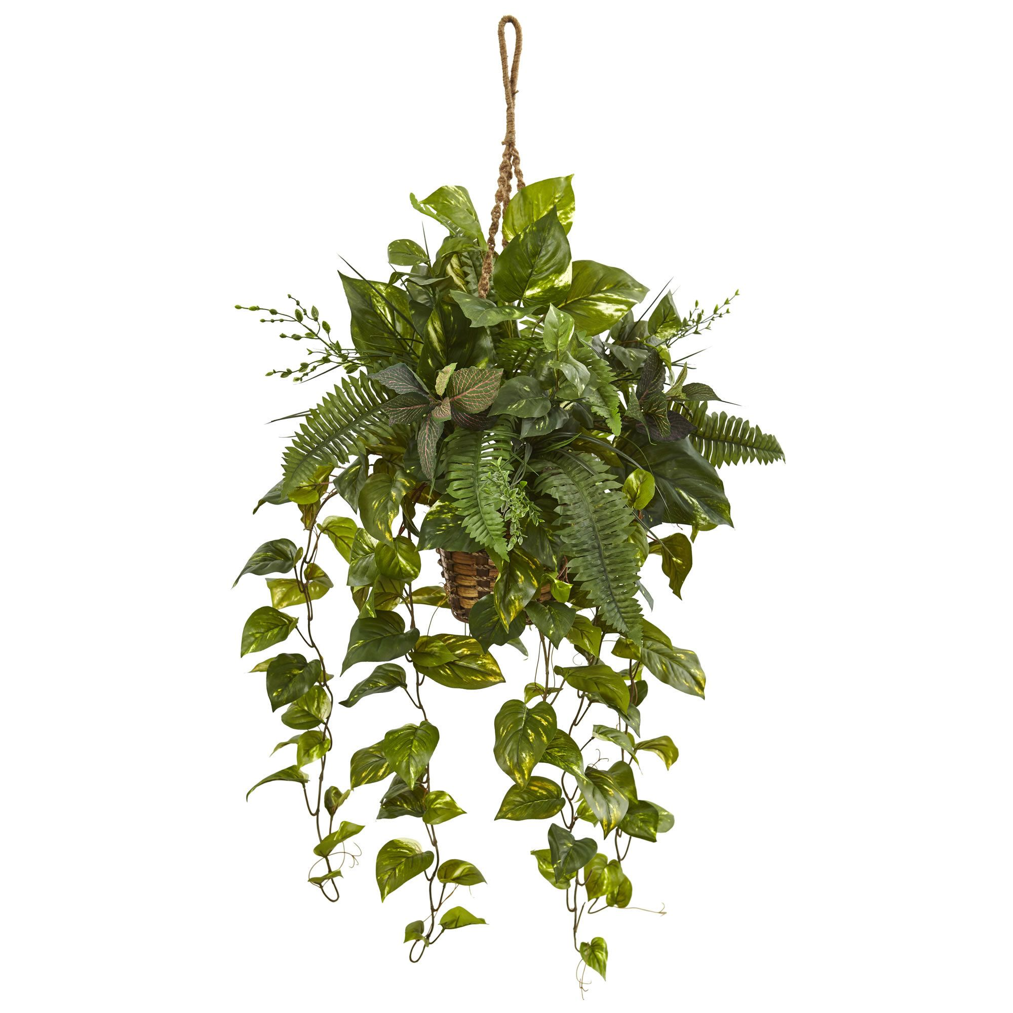 Artificial mixed pothos and boston fern hanging plant in basket ai