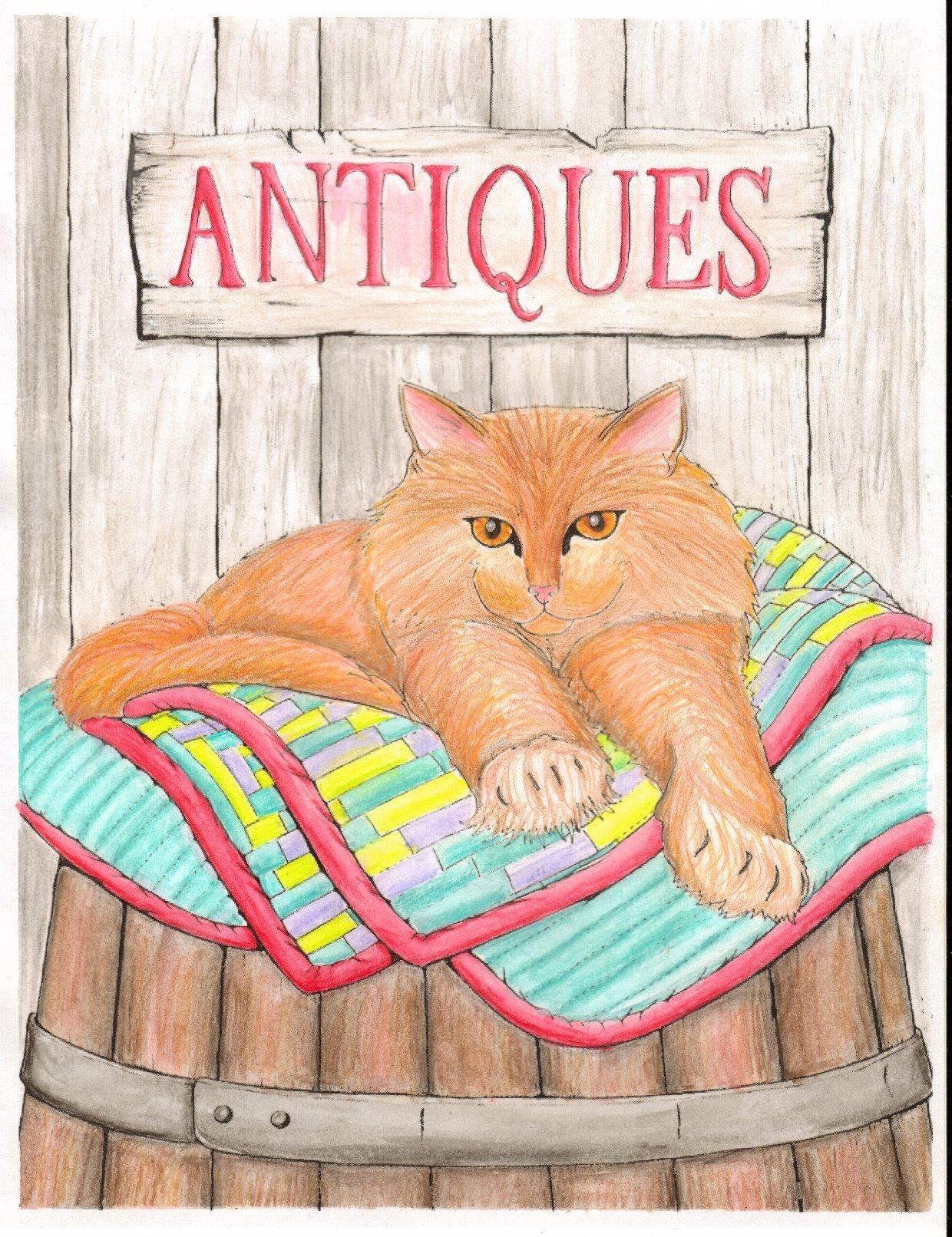 Amazon.com: Cats & Quilts: Adult Coloring Book ...