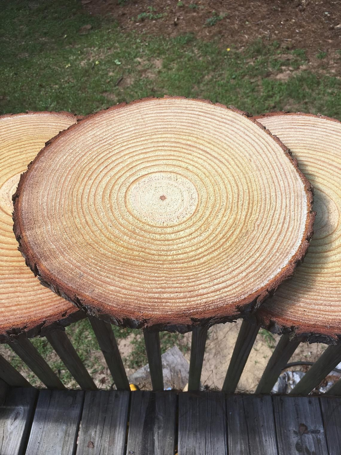 Set Of 15 10 Inch Wood Circles Tree Circles Wood Slices Etsy Wood Slices Rustic Wedding Centerpieces Wood Large Wood Slices