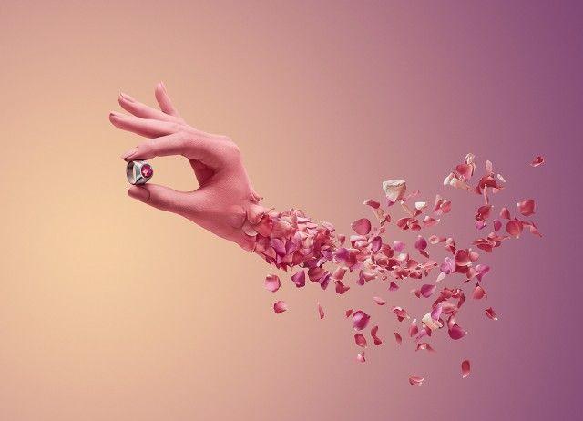 Image result for flower petal tumblr