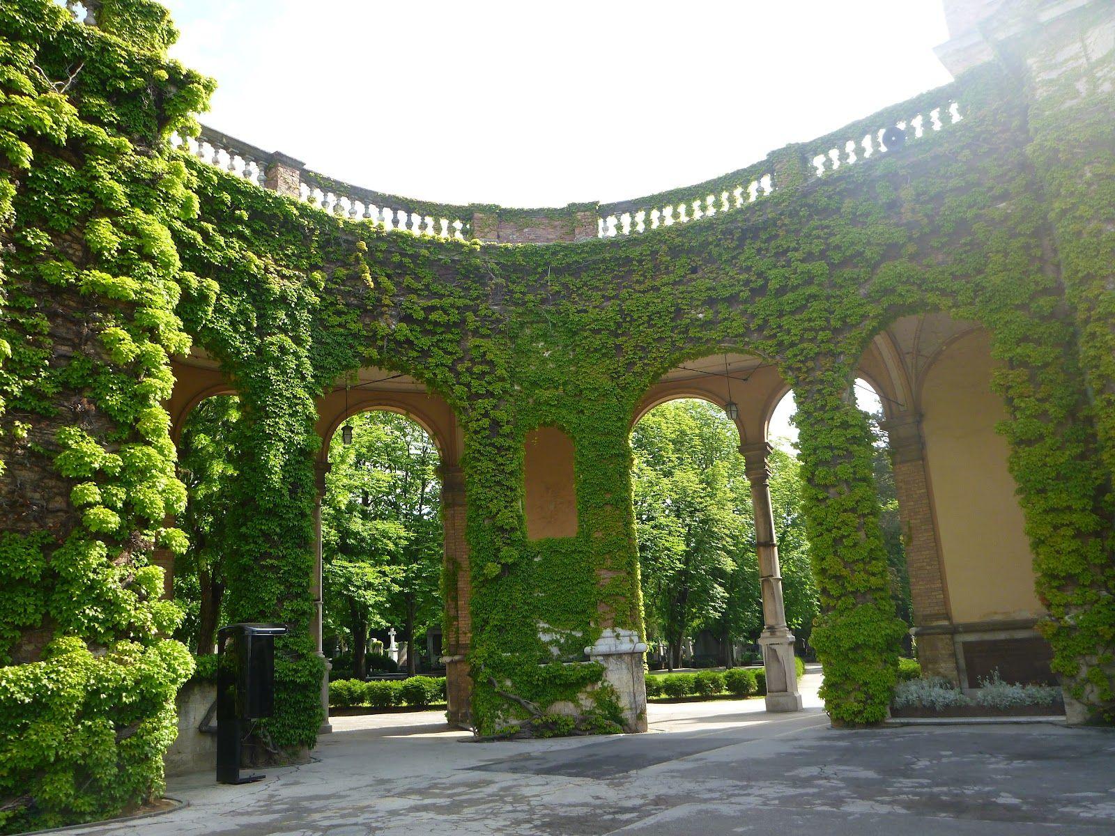 Elf palace portals magical doors pinterest elves ivy plants