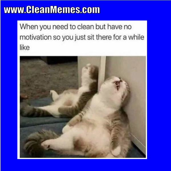 Www Cleanmemes Com Clean Memes Funny Memes Funny
