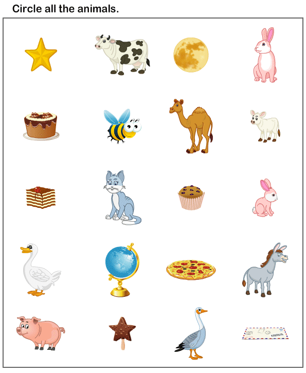 Preschool Worksheets, Animals Worksheets | Preschool Educational ...