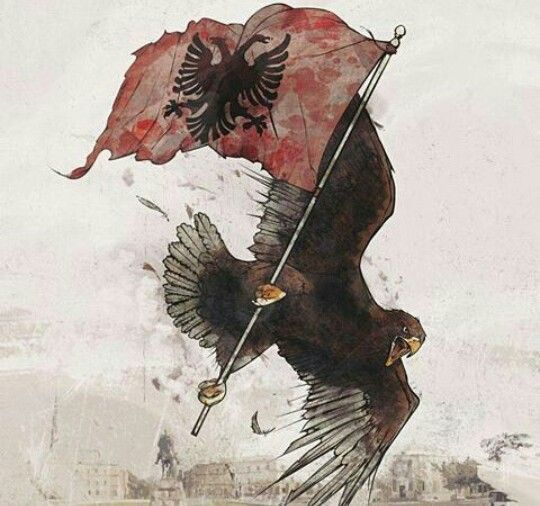 Pinterest Selenagomezii Albanian Tattoo Albanian Flag