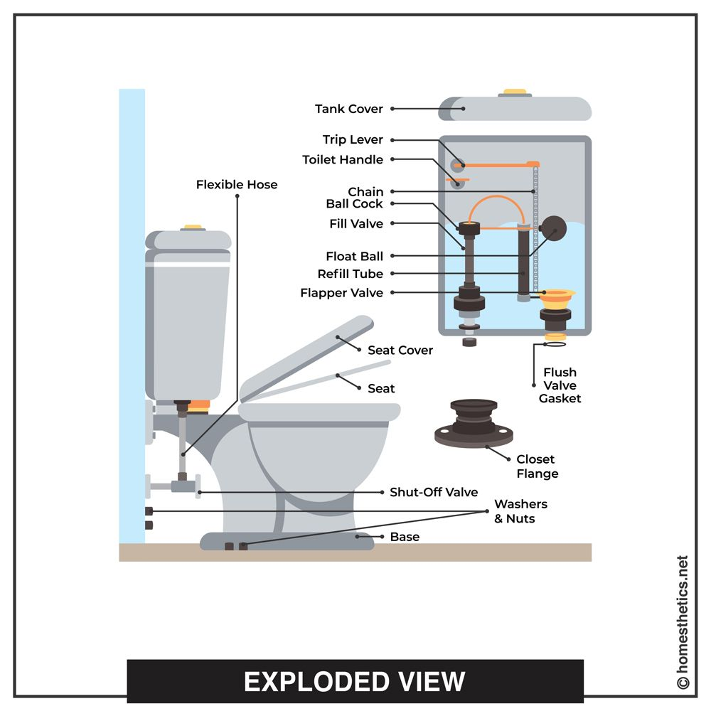 All The Parts Of A Toilet Explained Homesthetics Inspiring Ideas For Your Home In 2020 Floating Devices Flush Valves Modern Toilet