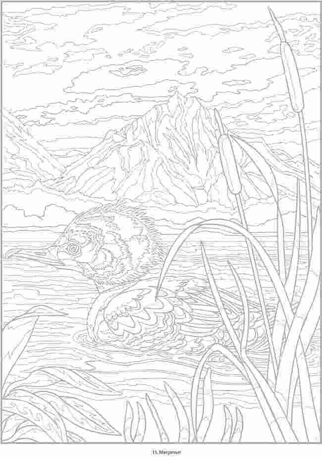 Coloring Pages Querkle Coloring Book Pages New 98 Printable Sheets Querklecoloringbooks Quer In 2020 Bird Coloring Pages Animal Coloring Pages Coloring Books