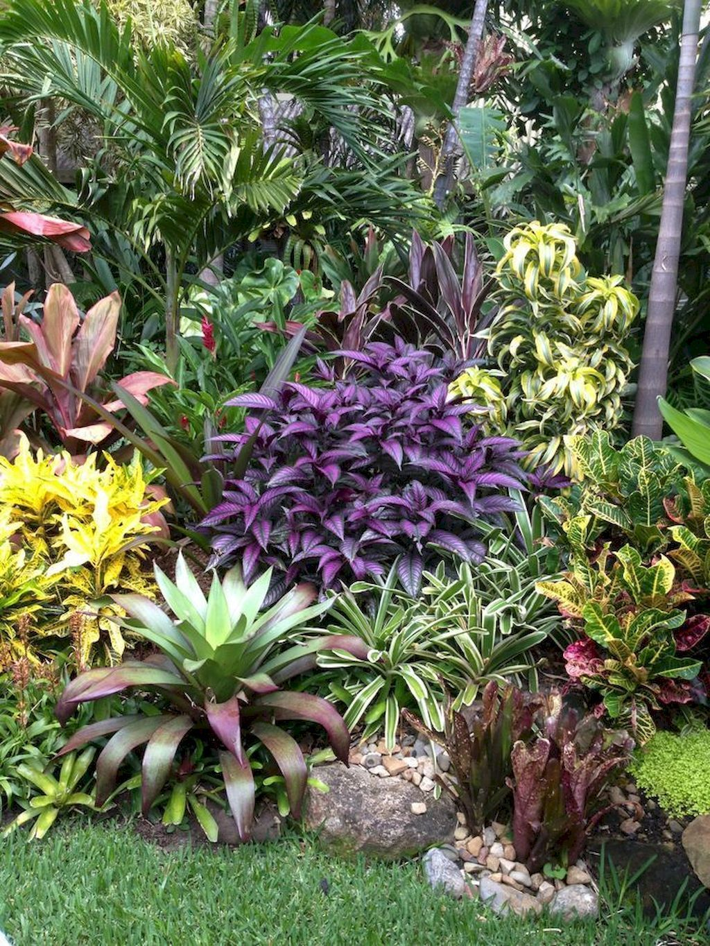 #homeandgardenlandscape | Tropical garden design, Tropical ... on Tropical Landscaping Ideas For Small Yards id=53505