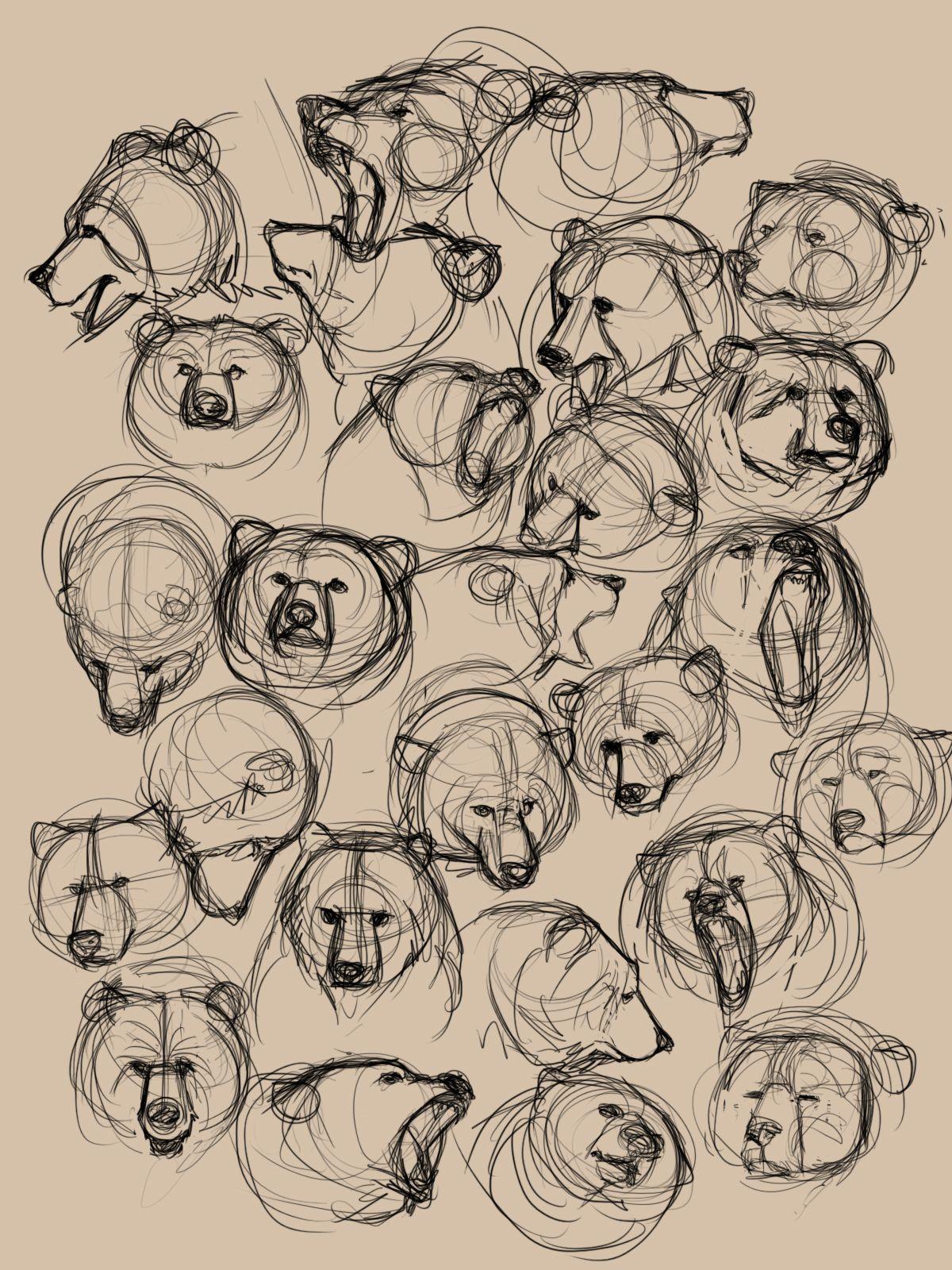 sketchandstudy | Drawing Objects - Line | Pinterest | Bear art, Art ...