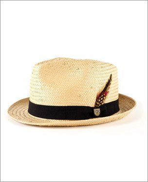 f1159a360b1855 Brixton feather hat Trilby Hat, Feather Hat, Brixton Hats, Panama Hat,  Panama