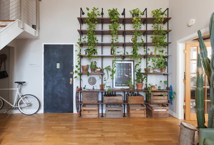 Attractive A Waterfall Of Vines Spills From High Shelves Along One Wall In The Living  Room Of Kotau0026 Cool, Sun Drenched Brooklyn Apartment.