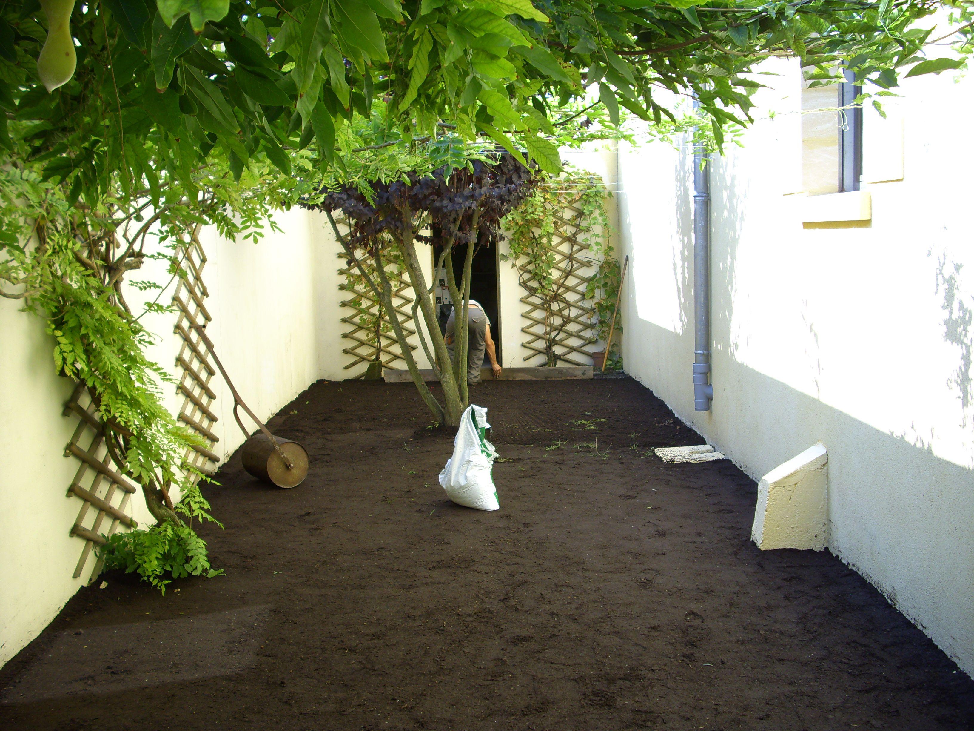 Création de gazon en jardin - Bègles